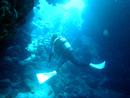 石垣島の水中