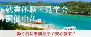 石垣島ダイビングショップ求人
